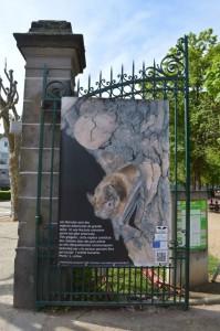Expo Jardin Lecoq